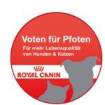 Voten für Pfoten