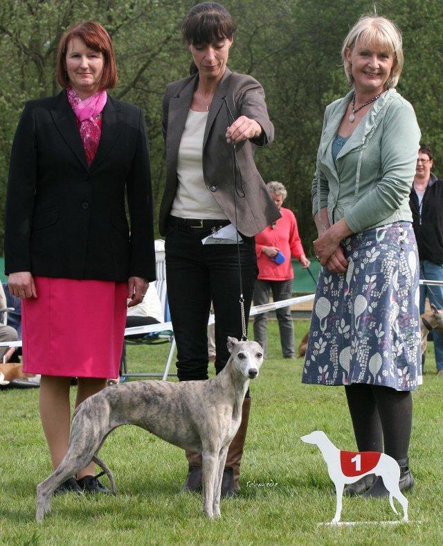 Sandra Biesenbach mit ihrer Veteranen-Jahessiegerin Ch.McKilroy Lisa Lustig, rechts: Cathy Brown (Bluestreak), links Maekin (Oakbark Whippets)