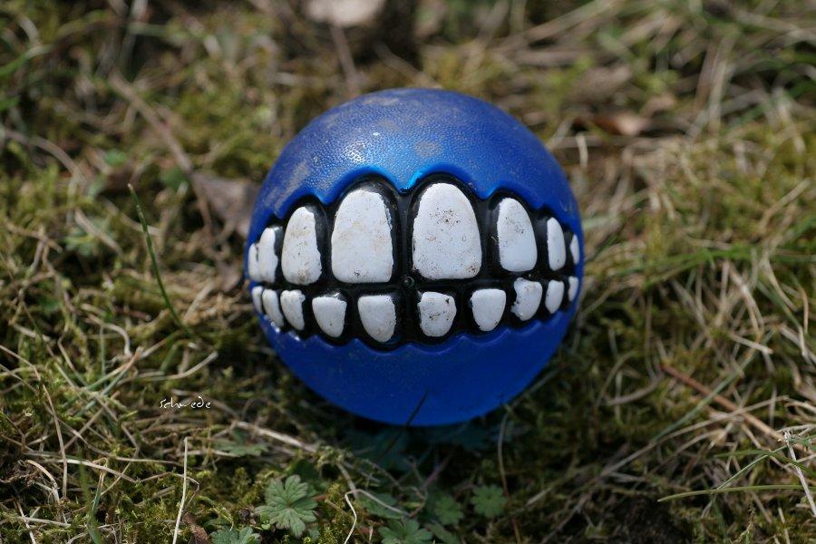 Zähne zeigen!