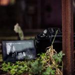 Die Kleine mit der großen Klappe - die Canon PowerShot G5X