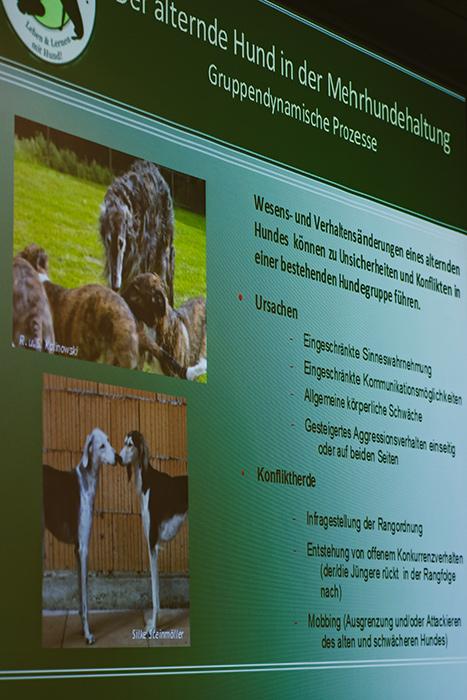 Der Vortrag von Kathrin Korthauer über die Verhaltensänderung bei alternden Hunden war höchst interessant.