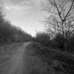 Der Weg. Zwischen Glück und Horror