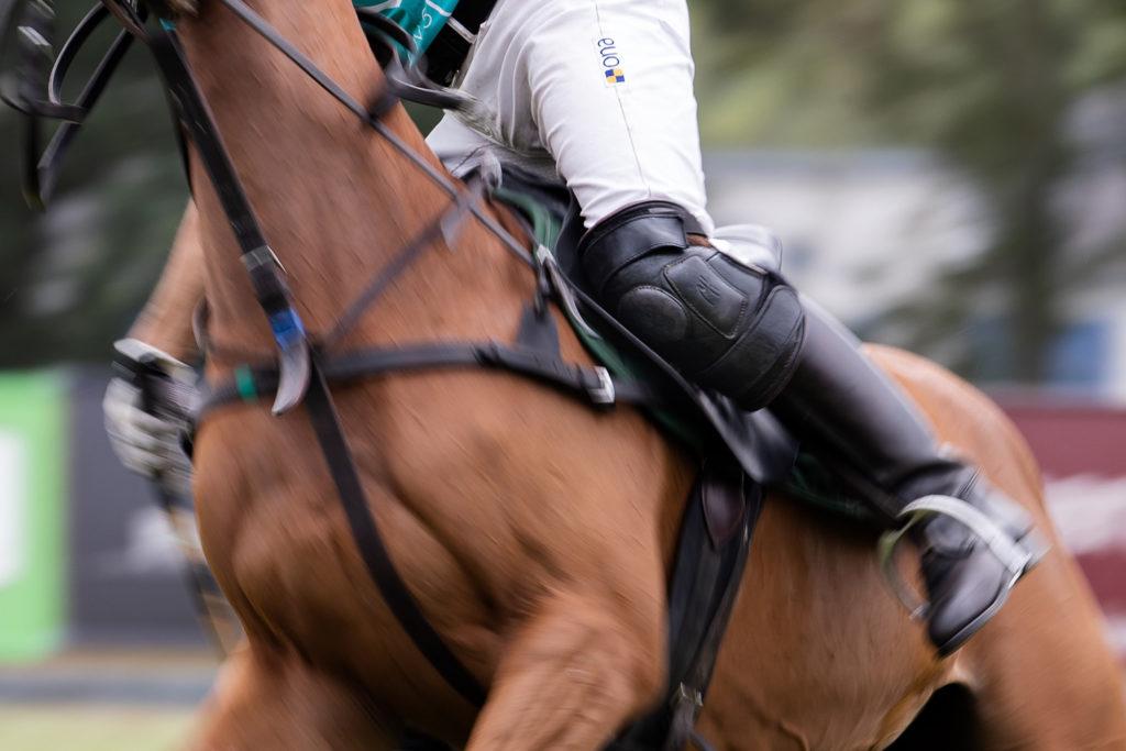 Die Rhein Polo Open 2019