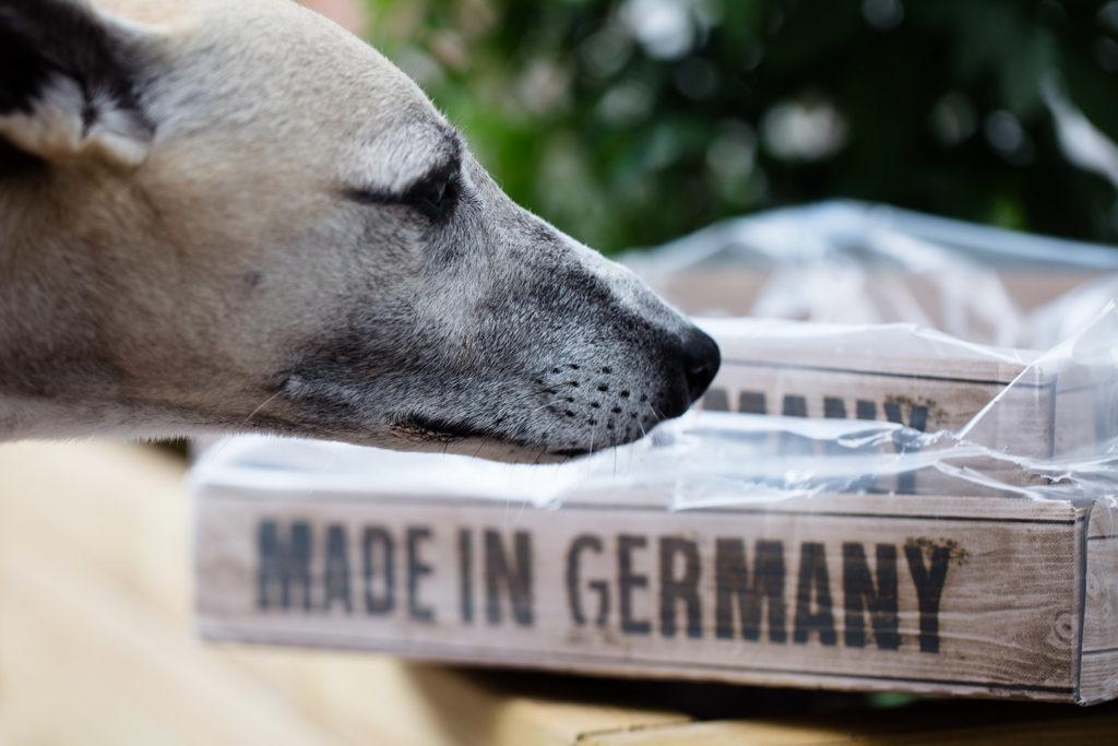 Made in Germany - Mono mag das Belcando Lachs & Huhn sehr gerne